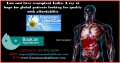 Low cost liver transplant India
